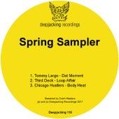 Spring Sampler - Single by Various Artists