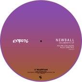 Celebrate EP by Newball