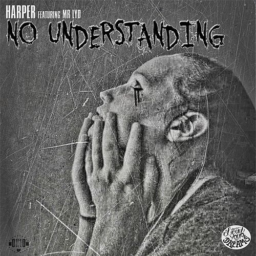 No Understanding (feat. Mr. Lyd) by Harper