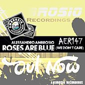 Roses Are Blue (We Don't Care) by Alessandro Ambrosio