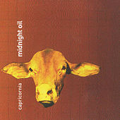 Play & Download Capricornia by Midnight Oil | Napster