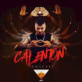 Calenton by Chacal
