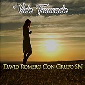 Vida Truncada (feat. Grupo SN) by David Romero