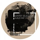 Winter Selection Part I by Various