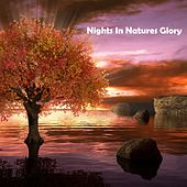 Night In Natures Glory by Relaxation and Dreams Spa