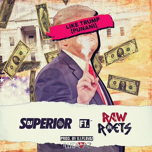 Like Trump (Punani) [feat. RAW ROETS] by DJ Superior