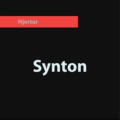Synton by Hjortur