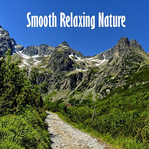 Smooth Relaxing Nature by Relaxing Mindfulness Meditation Relaxation Maestro