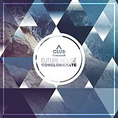 Future House Conglomerate, Vol. 1 by Various Artists