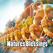 Natures Blessings by Yoga Music