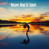 Natures Mind At Sunset de Musica Relajante