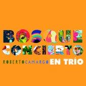 Bosqueconcierto en trío by Roberto Camargo
