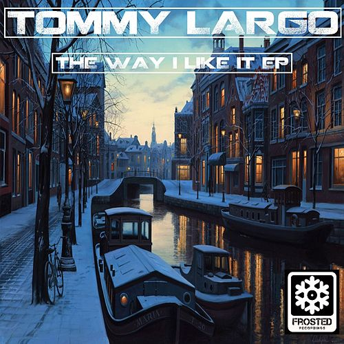 The Way I Like It - Single by Tommy Largo