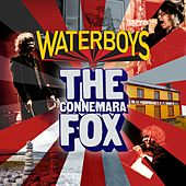 The Connemara Fox von The Waterboys