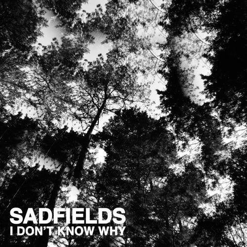 I Don't Know by Sadfields