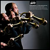 Flugelhorn Horn Samples for Beat Makers and Producers by Miles Bonny