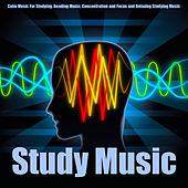 Study Music: Calm Music for Studying, Reading Music, Concentration and Focus and Relaxing Studying Music by Study Music