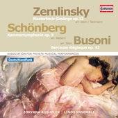 Schoenberg: Chamber Symphony No. 1 - Zemlinsky: 6 Gesänge - Busoni: Berceuse élégiaque by Various Artists