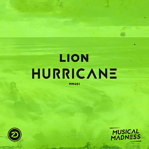 Hurricane by Lion