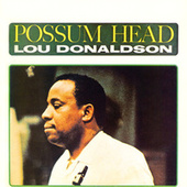 Possum Head by Lou Donaldson