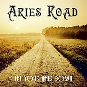Let Your Hair Down by Aries Road