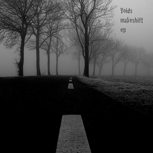 Makeshift by The Voids
