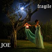 Fragile by Joe