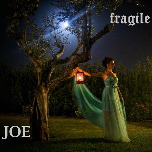Fragile by Joe
