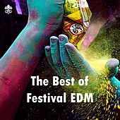 The Best of Festival EDM by Various Artists