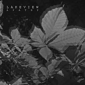 Apathy by Lakeview