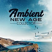 Ambient New Age Collection – Deep Relaxation, New Age Music, Nature Sounds, Rest, Relax, Calmness by Calming Sounds