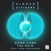 Down Come the Rain by Hidden Citizens