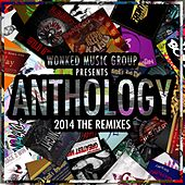 WoNKed Music Group Presents: Anthology - 2014 The Remixes - EP by Various Artists