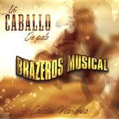 Mi Caballo De Palo by Brazeros Musical