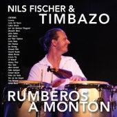 Rumberos a Montón by Nils Fischer