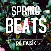 Spring Beats - EP by Various Artists