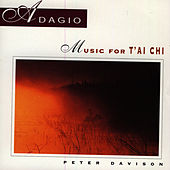 Play & Download Adagio: Music For T'ai Chi by Peter Davison | Napster