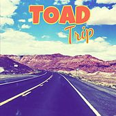 TOAD Trip by Toad