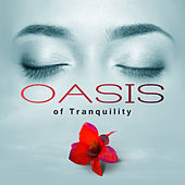 Oasis of Tranquility – Zen Massage, Pure Relax, Deep Sleep, Gold Spa, Inner Peace by S.P.A