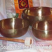 Sounds For The Enlightened by Sounds of Nature Relaxation