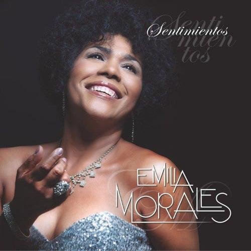 Sentimientos by Emilia Morales