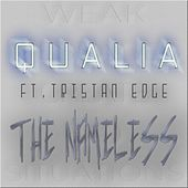 The Nameless (feat. Tristan Edge) by Qualia
