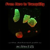 From Here to Tranquility, Vol. 8 by Various Artists