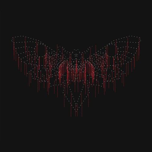 Moth by John Beltran