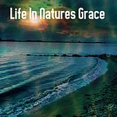 Life In Natures Grace by Yoga Music