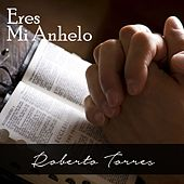 Eres Mi Anhelo by Roberto Torres
