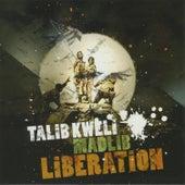 Liberation by Madlib