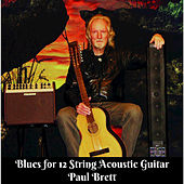 Blues for 12 String Acoustic Guitar by Paul Brett