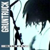 Bar Fly by Gruntruck