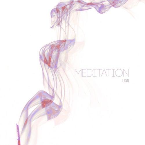 Meditation by Lion